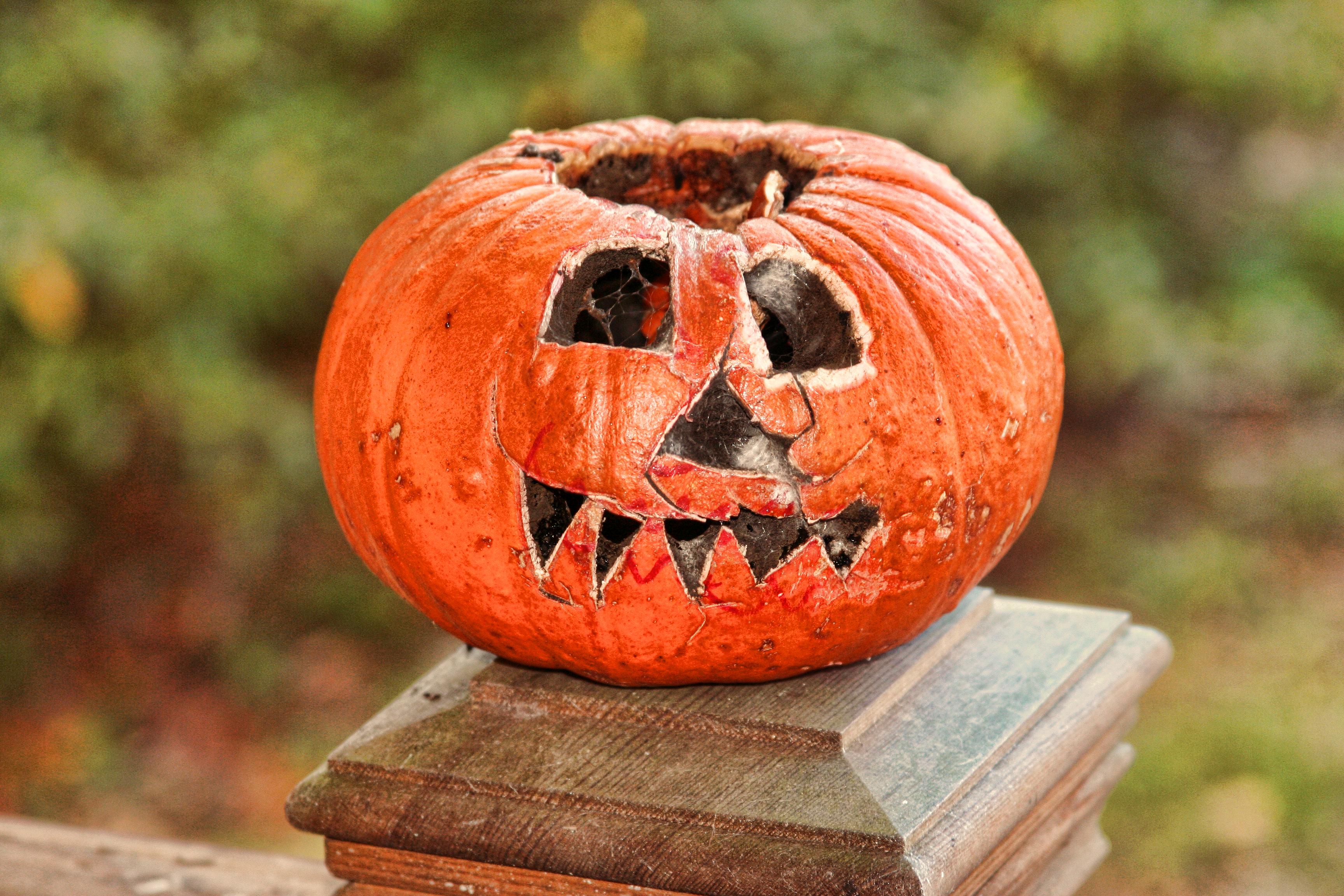 goodbye-halloween_10909037976_o