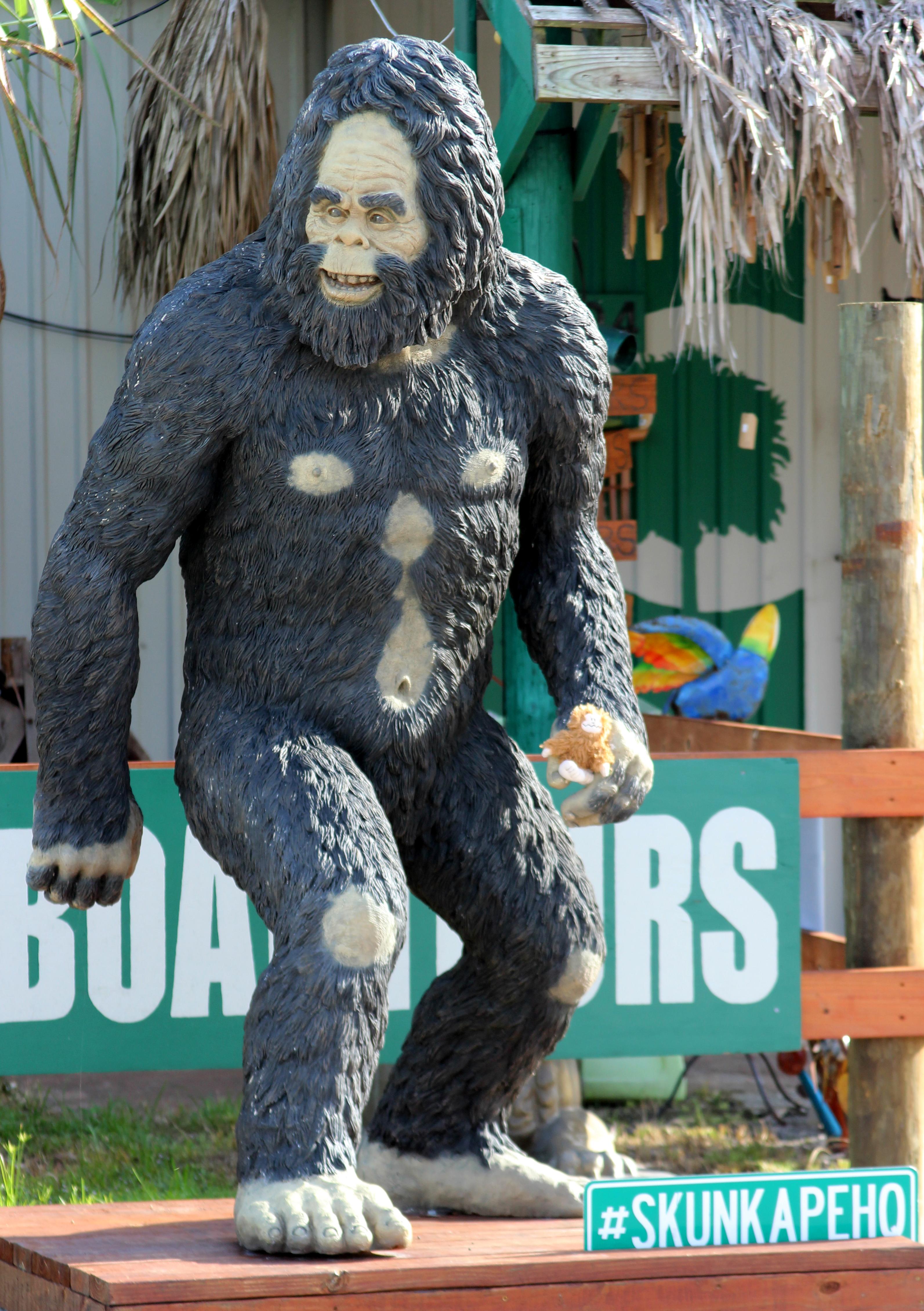 skunkape-or-bigfoot_35716971014_o
